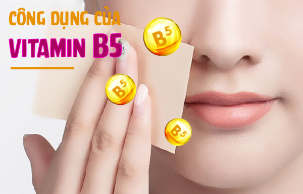 Công dụng Vitamin B5