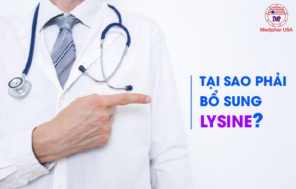 bổ sung lysine