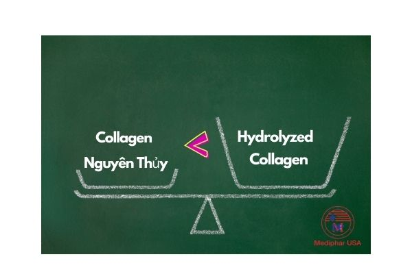 hydrolyzed collagen trong mỹ phẩm