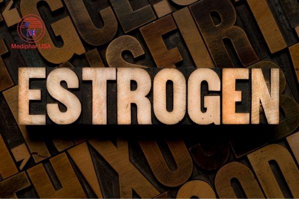 estrogen là chất gì