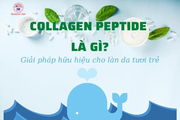 peptide collagen là gì